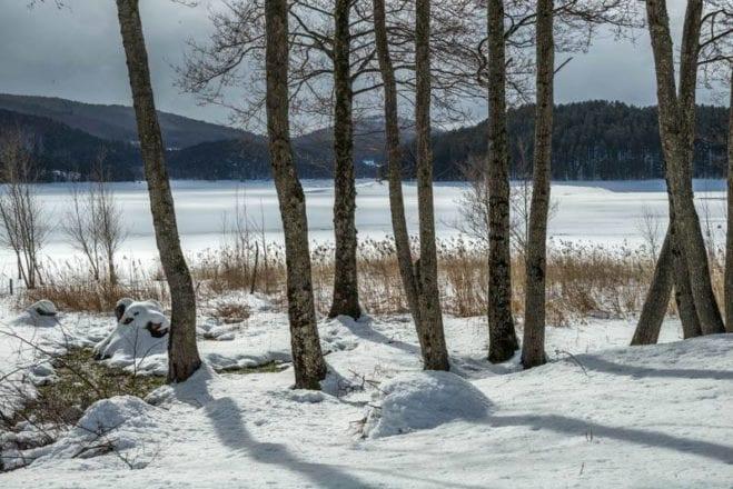 Parco della Sila, oggi - Lago Arvo Ghiacciato Fonte Sonia Ferrari