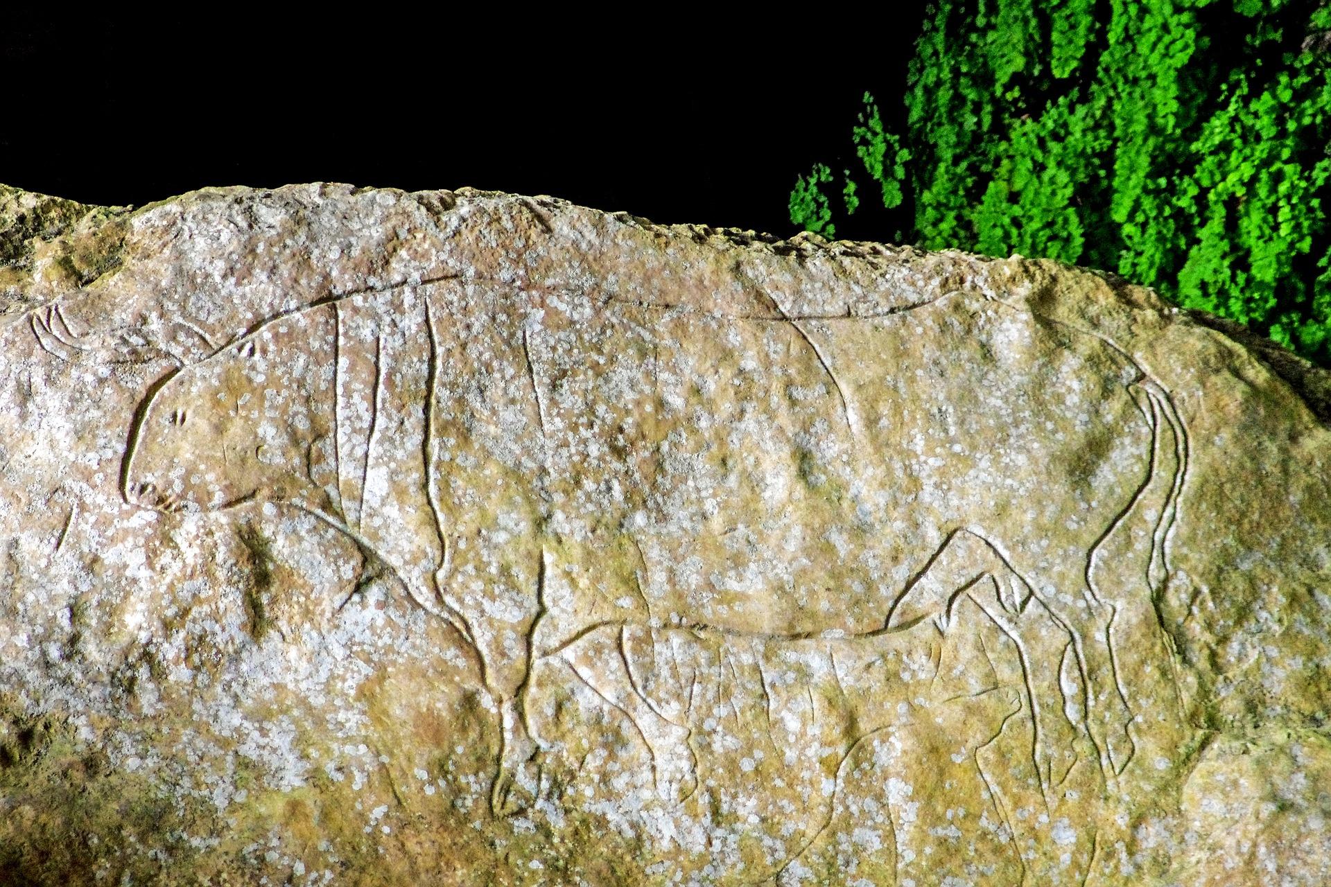 Grotta del Romito, Papasidero