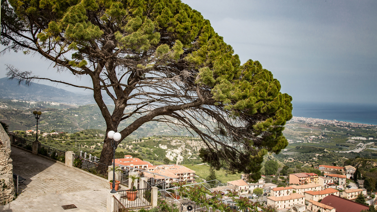 Gerace Marco del Sorbo Flick 1280 x 720