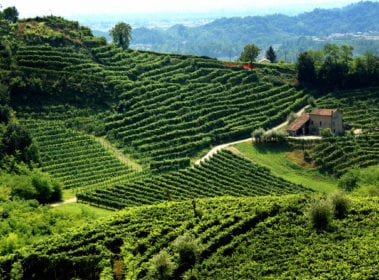 What are the 10 must-see farms hotels in Calabria?