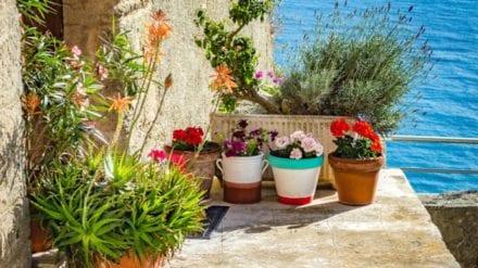 Let´s visit Fiumefreddo Bruzio in Calabria